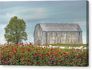 Barn With Charm Canvas Print