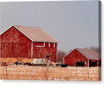 Barns In Winter Canvas Print by David Bearden