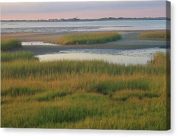 Barnstable Harbor Marsh Grasses And Sandy Neck Lighthouse Canvas Print