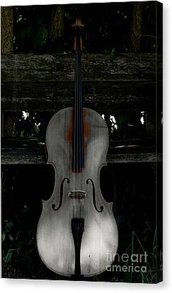 Barnyard Cello Canvas Print by Steven Digman