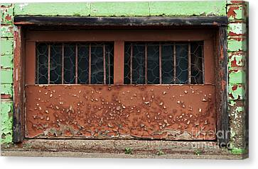 Barred And Weathered Canvas Print by Royce Howland