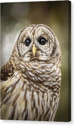 Canvas Print featuring the photograph Hoot by Steven Sparks