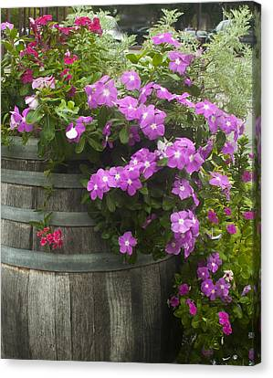 Barrel Of Flowers Canvas Print