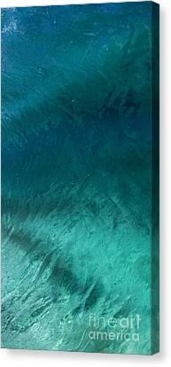 Barrel Swirl  -  Triptych  Part 3 Of 3 Canvas Print