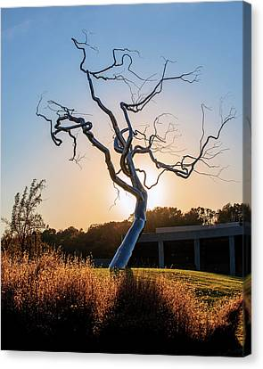 Barren Light - Crystal Bridges Museum Of American Art Canvas Print by Gregory Ballos