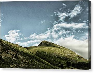 Dry Lake Canvas Print - Barrenlands by Martin Newman