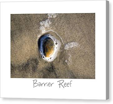 Barrier Reef Canvas Print by Peter Tellone