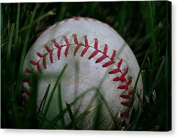 Baseball Canvas Print by Diane Reed