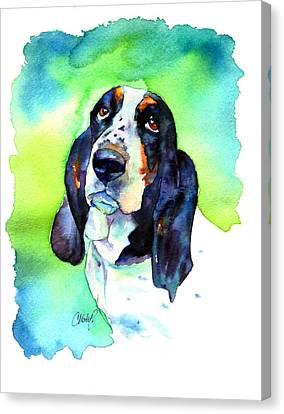 Basett Hound Canvas Print