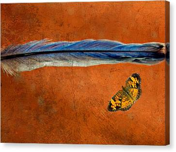 Basic Elements Of Flight Bluebird Gift 3 Canvas Print