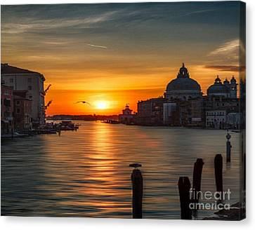 Basilica Di Santa Maria Dela Salute, Venice Canvas Print by Rod Jellison