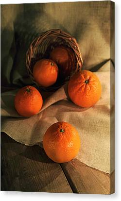 Basket Of Fresh Tangerines Canvas Print