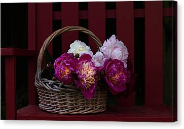 Basket On The Bench Canvas Print by Rebecca Cozart