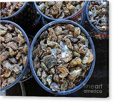 Raw Oyster Canvas Print - Baskets With Oysters by Yali Shi