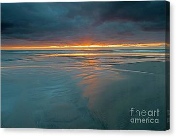 Basking In The Light Canvas Print by Mike Dawson