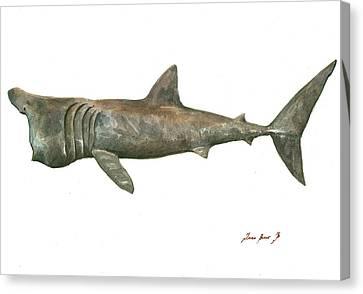 Basking Shark Canvas Print