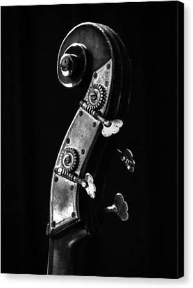 Bass Violin Canvas Print