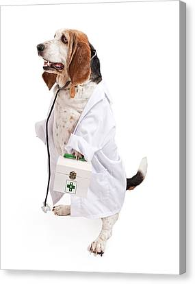 Basset Hound Dog Dressed As A Veterinarian Canvas Print by Susan  Schmitz