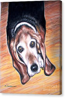 Canvas Print featuring the painting Basset Hound  by Patricia L Davidson