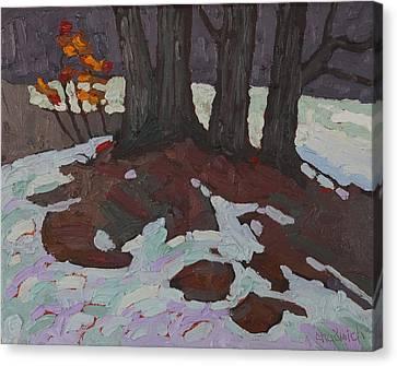 Basswood Copse Canvas Print