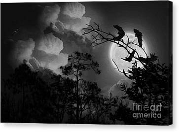 Bat In The Dark Canvas Print by Gull G