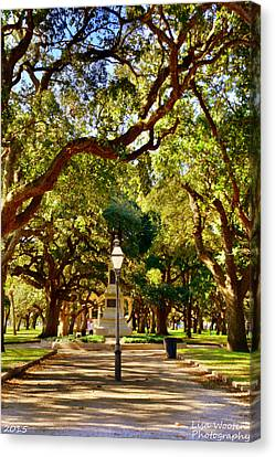 Battery Park Charleston Sc Canvas Print by Lisa Wooten