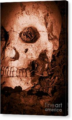 Battle Skull Canvas Print by Jorgo Photography - Wall Art Gallery
