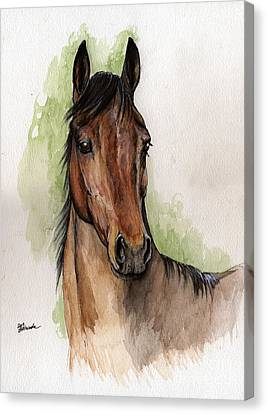 Bay Horse Canvas Print - Bay Horse Portrait Watercolor Painting 02 2013 by Angel  Tarantella