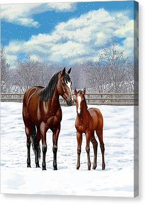 Bay Mare And Foal In Winter Canvas Print