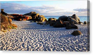Bay Of Fires Sunrise Canvas Print by Lexa Harpell