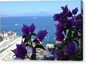 Bay Of Naples Canvas Print by Terence Davis