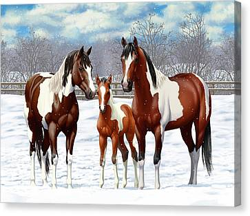 Bay Paint Horses In Winter Canvas Print by Crista Forest