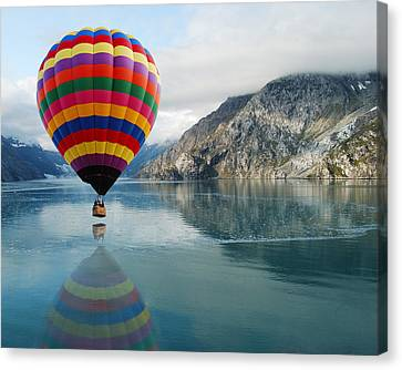 Bay Skimmer Canvas Print by Michael Peychich