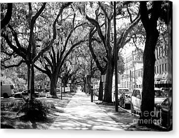 Bay Street Canvas Print