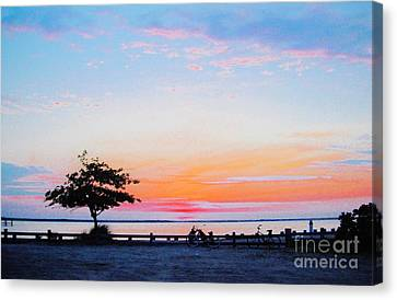 Canvas Print featuring the photograph Bay Sunset by Susan Carella