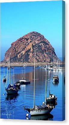 Bay View Detail Morro Bay California Canvas Print by Barbara Snyder