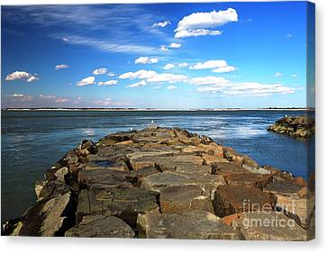 Canvas Print featuring the photograph Bay Watching by John Rizzuto