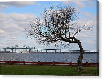 Canvas Print featuring the photograph Bayonne by Steven Richman