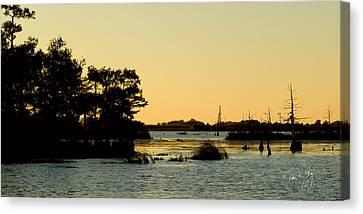 Bayou Sunset Venice Louisiana Canvas Print