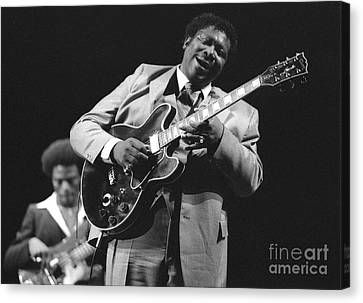 Bb King In Love With Lucille Canvas Print by Philippe Taka