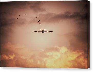 Airoplane Canvas Print - Bbmf Hurricane And Birds by Nigel Bangert