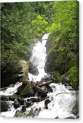 Bc Mountain Stream Canvas Print by Reb Frost