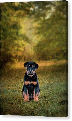 Be My Friend Puppy Dog Art Canvas Print