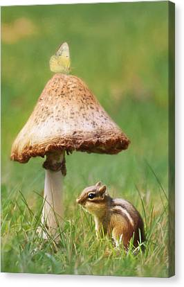 Be My Shelter Canvas Print by Lori Deiter