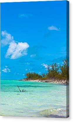 Beach At North Bimini Canvas Print