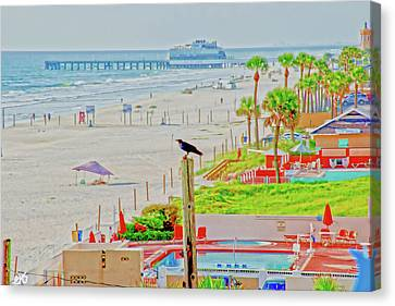 Beach Bird On A Pole Canvas Print