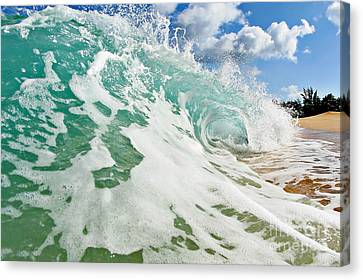 Beach Breaker Canvas Print by Paul Topp