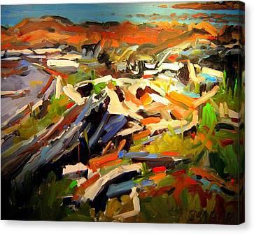 Beach Canvas Print by Brian Simons