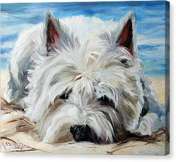 West Highland Canvas Print - Beach Bum by Mary Sparrow