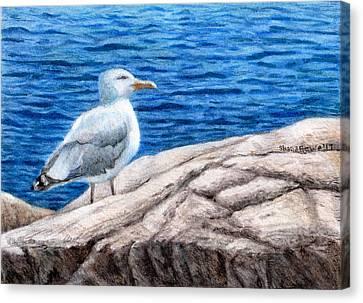 Dwell Canvas Print - Beach Bum by Shana Rowe Jackson